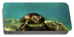 Sea Turtle  Portable Battery Charger