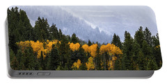 Portable Battery Charger featuring the photograph Seasonal Contrast by Michael Ash