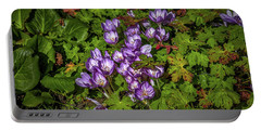 Portable Battery Charger featuring the photograph September Crocus #h9 by Leif Sohlman