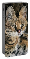Serval Portrait Wildlife Rescue Portable Battery Charger