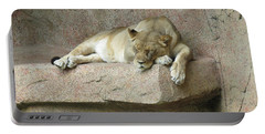 She Lion Portable Battery Charger