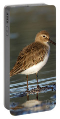 Shoreline Dunlin Portable Battery Charger