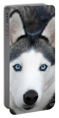 Portable Battery Charger featuring the painting Siberian Husky Mask A91818 by Mas Art Studio