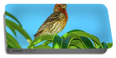 Singing House Finch Portable Battery Charger