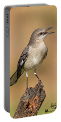 Singing Mockingbird Portable Battery Charger