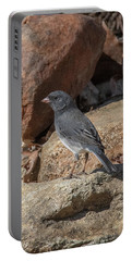 Slate-colored Junco Dsb0339 Portable Battery Charger