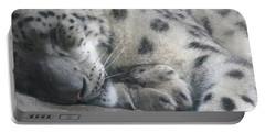 Sleeping Cheetah Portable Battery Charger