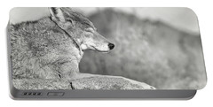 Sleepy Coyote Portable Battery Charger