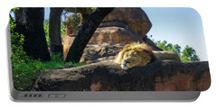 Sleepy Lion Portable Battery Charger