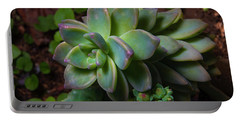 Small Succulents Portable Battery Charger