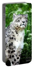 Snow Leopard, Leopard Art, Animal Decor, Nursery Decor, Game Room Decor,  Portable Battery Charger