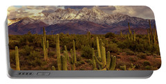 Portable Battery Charger featuring the photograph Snowy Dreams by Rick Furmanek