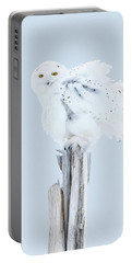 Snowy Owl Feather Shake Portable Battery Charger