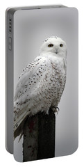 Snowy Owl In Fog Portable Battery Charger