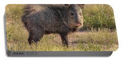 Solo Javelina Portable Battery Charger