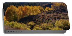 Portable Battery Charger featuring the photograph Sonora Pass by Tassanee Angiolillo
