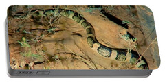 Portable Battery Charger featuring the photograph Sonoran Desert Longnosed Snake Vintage by Judy Kennedy