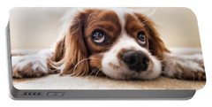 Spaniel Puppy Dwp2785074 Portable Battery Charger