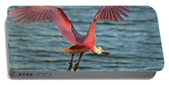 Spoonbill Maestro  Portable Battery Charger