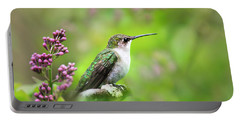 Portable Battery Charger featuring the photograph Spring Beauty Ruby Throat Hummingbird by Christina Rollo
