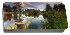 Spring Lake Portable Battery Charger