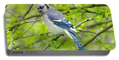 Springtime Bluejay Portable Battery Charger