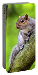 Squirrel At Greenwich Park Portable Battery Charger