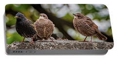 Starling Fledgling Portable Battery Charger
