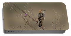 Stout Cisticola Portable Battery Charger