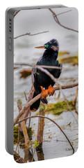 Stunning Anhinga Portable Battery Charger
