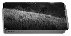Sunlight On Ferns, Mount Willard Portable Battery Charger