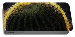 Sunset Cactus Portable Battery Charger