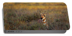 Sunset Pronghorn Portable Battery Charger