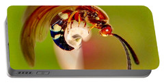 Swirly Wasp Portable Battery Charger