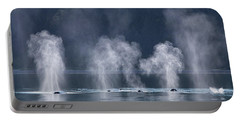 Synchronized Swimming Humpback Whales Alaska Portable Battery Charger