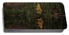 Portable Battery Charger featuring the photograph Tamarack Defiance by Doug Gibbons