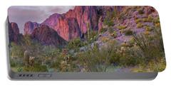 Teddy Bear Cholla And Saguaro, Kofa Portable Battery Charger