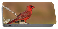 Texas Cardinal Portable Battery Charger