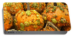 Textured Pumpkins  Portable Battery Charger