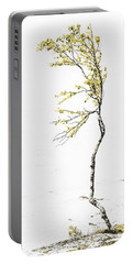 Portable Battery Charger featuring the photograph The Birch Tree by Ari Salmela