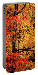 The Colors Of Fall Portable Battery Charger