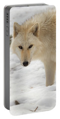 The Eyes Of A Wolf Portable Battery Charger