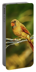 The Female Cardinal Portable Battery Charger