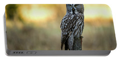 The Great Gray Owl In The Morning Portable Battery Charger