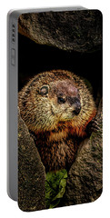 The Groundhog Portable Battery Charger