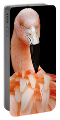 The Magnificent Pink Flamingo - Bird Portrait  Portable Battery Charger