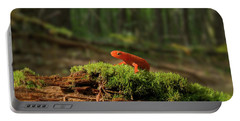 The Moss Boss Portable Battery Charger
