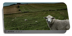 Portable Battery Charger featuring the photograph The Sheep On The Clifftop by Chris Lord