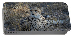 Cheetah In Repose Portable Battery Charger