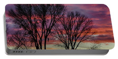 Portable Battery Charger featuring the photograph The Trees Know Sunset by Gaelyn Olmsted